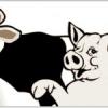 魔法の薬でポポポポーン♪ 今度は豚を牛にリサイクル。