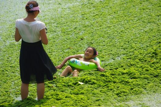 中国青島・藻の海水浴場1