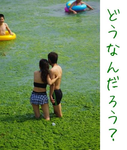 中国青島にて。藻の海上のカップル。