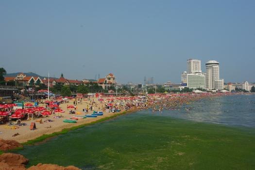 中国青島の藻の海水浴場3