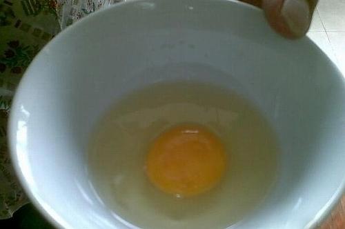 偽物の卵。