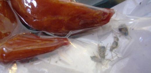 中国青島のゴキブリ入りソーセージ