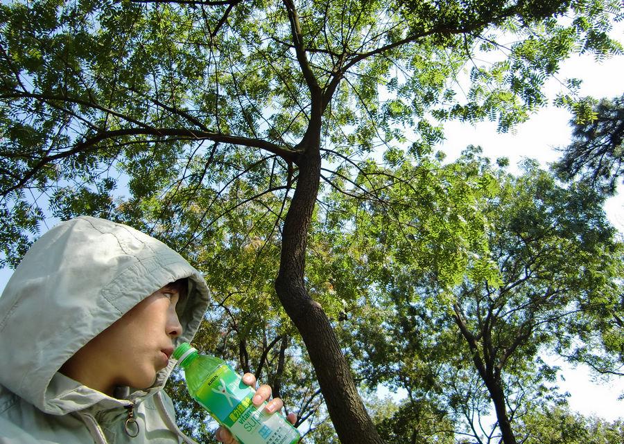 青空と木の下で。青島の中山公園。