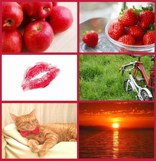 赤いもの。