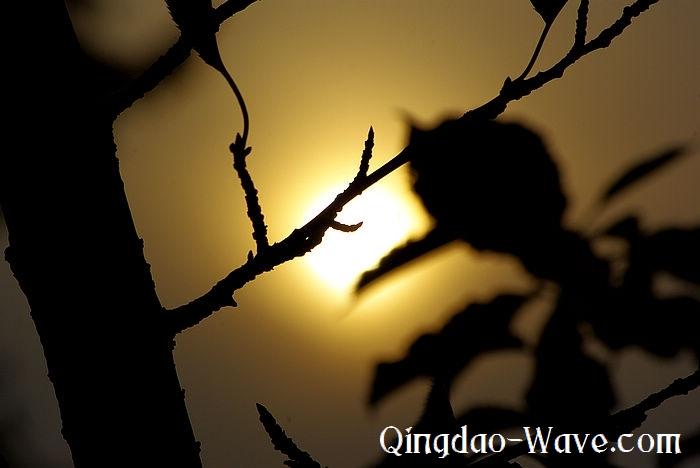 秋の夕暮れ。中山公園。