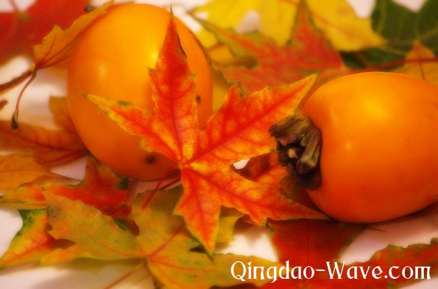 秋はオレンジ色かなー