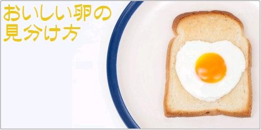 おいしい卵の見分け方