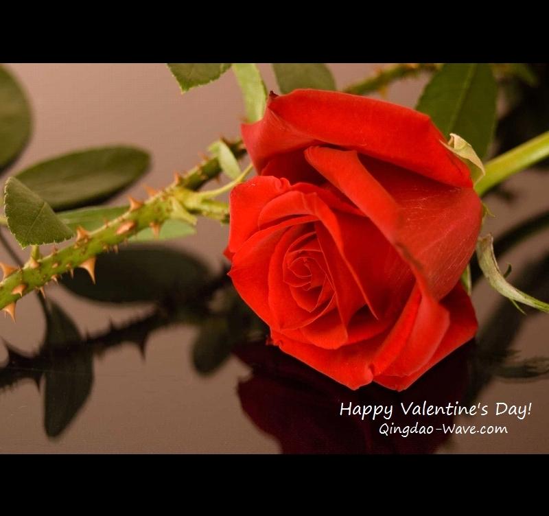 Happy Valentine's Day!-1