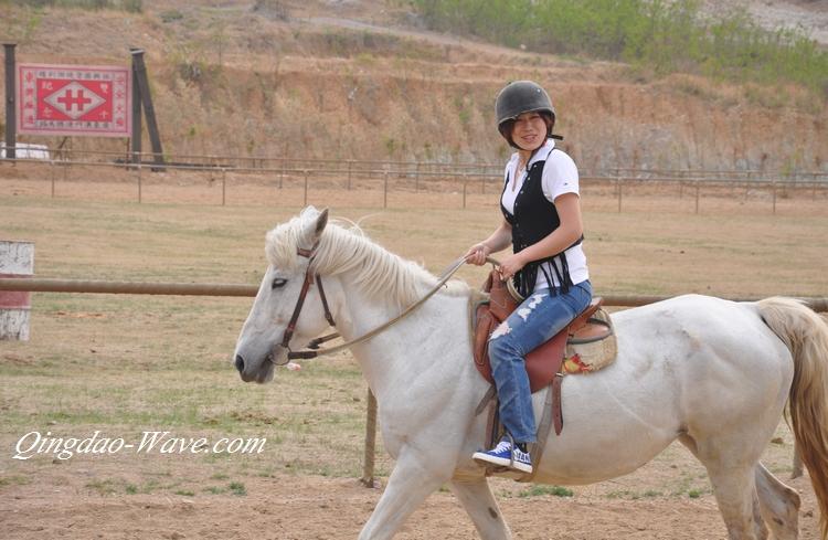 青島の馬術(乗馬)倶楽部に行ってきました。