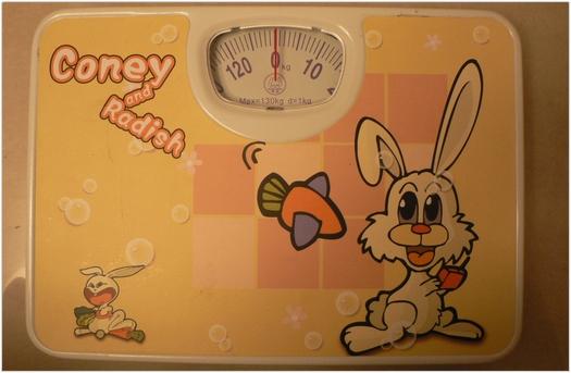ごまかすことができない私の体重計。
