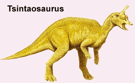 チンタオサウルス